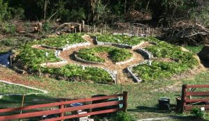 kashi-mandala-garden
